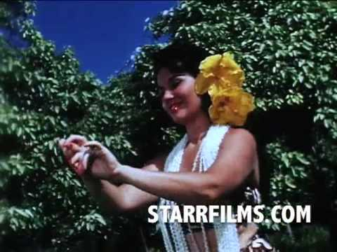 Hawaiian Travel FILM 1960