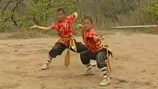 Shaolin Kung Fu: Tiger & Dragon fighting techniques