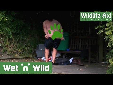 Volunteer Gets Naked for Wildlife!