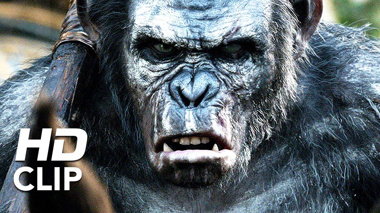Apes Revolution Il Pianeta Delle Scimmie Sopravvissuti Clip Hd
