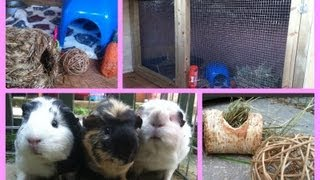 Diy Guineapig Hutch Tour