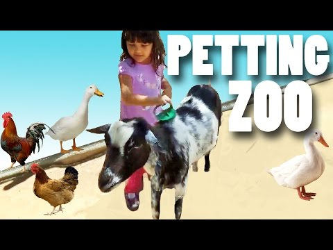 Petting ZOO Farm Animals Learn Animals Names and Sounds for Kids