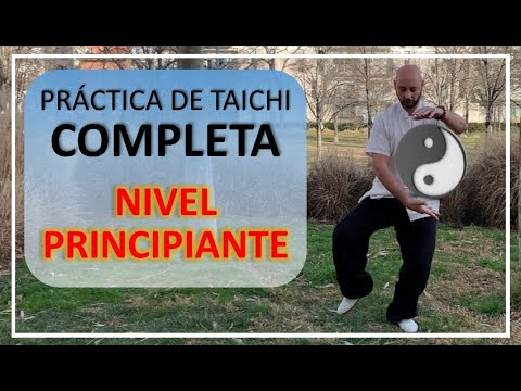 Práctica Completa de TAI CHI de 4 MINUTOS al DÍA - Altamente Relajante
