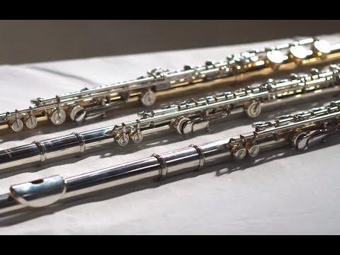 $600 Vs $10000 Vs $30000 Flute! WORTH IT???