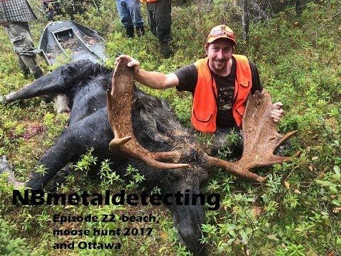 Beach, moose hunt 2017 and Ottawa