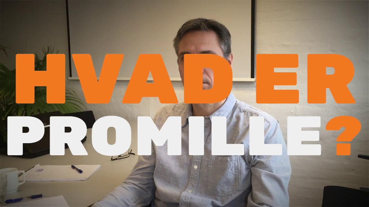 Hvad er Promille?