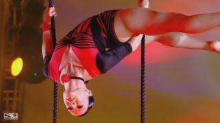 Circus, The dogs show, Aerialists | Цирк Шоу собак Воздушные гимнасты