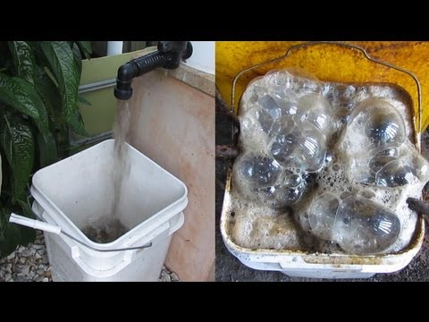 Worm casting tea made from Aquaponic radial flow filter waste water..