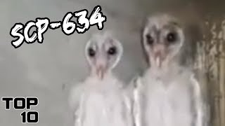 Top 10 Scary SCP That Could End The World - Part 4