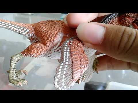 Safari ltd feathered velociraptor review