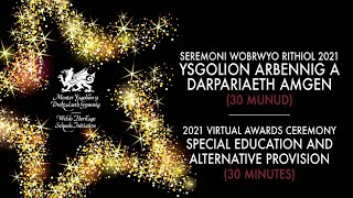 Ysgolion Arbennig a Darpariaeth Amgen | Special Education and Alternative Provision