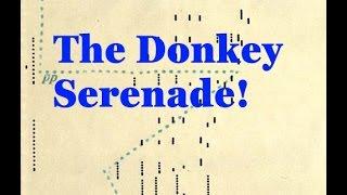 Play: The Donkey Serenade!