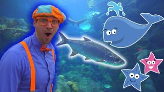Blippi | Blippi Visits The Aquarium! | Educational Videos for Toddlers