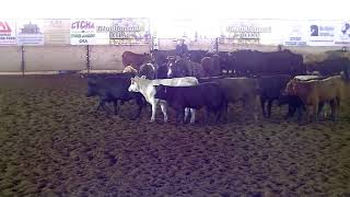 5-18-18  ACHA Wknd - Brenham, TX - Paige Kincaid - HIGH BROW DEE JAY - Op Derby - 74