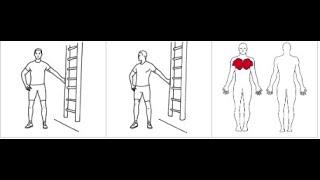 Brysttøyning med arm under skulderhøyde