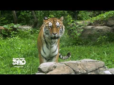 Endangered Species at Blank Park Zoo