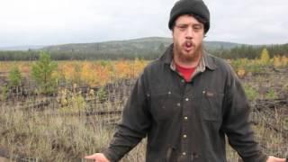 видео Как выкупить землю из аренды в собственность?
