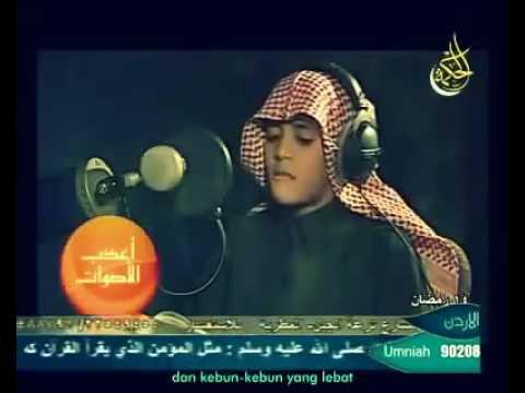 Surat An Naba -  Muhammad Taha Al Junayd