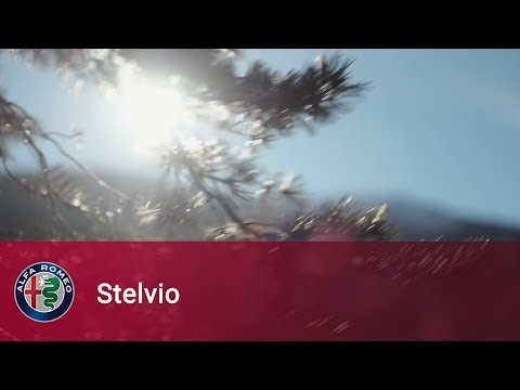 Alfa Romeo Stelvio - I've been here for a long time