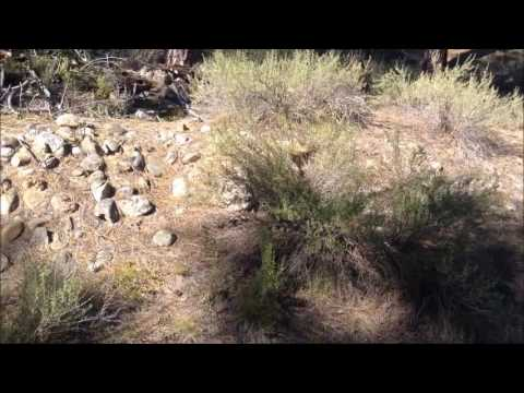 Historical Pioneer Graveyard For Sale by Remax in Idaho City, Idaho; Gold Mine