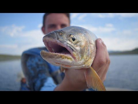Fishing At Strawberry Reservoir Utah For TROUT!! I Caught My PB!! ( Utah Ep.3 )