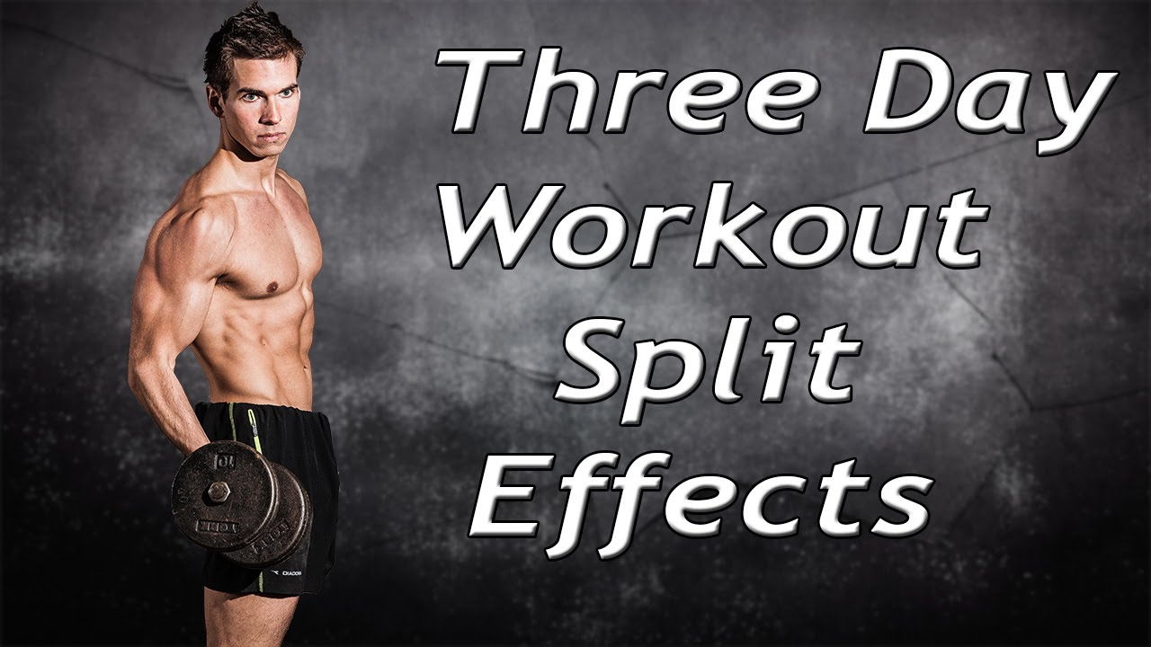 Three Day Workout Split Results