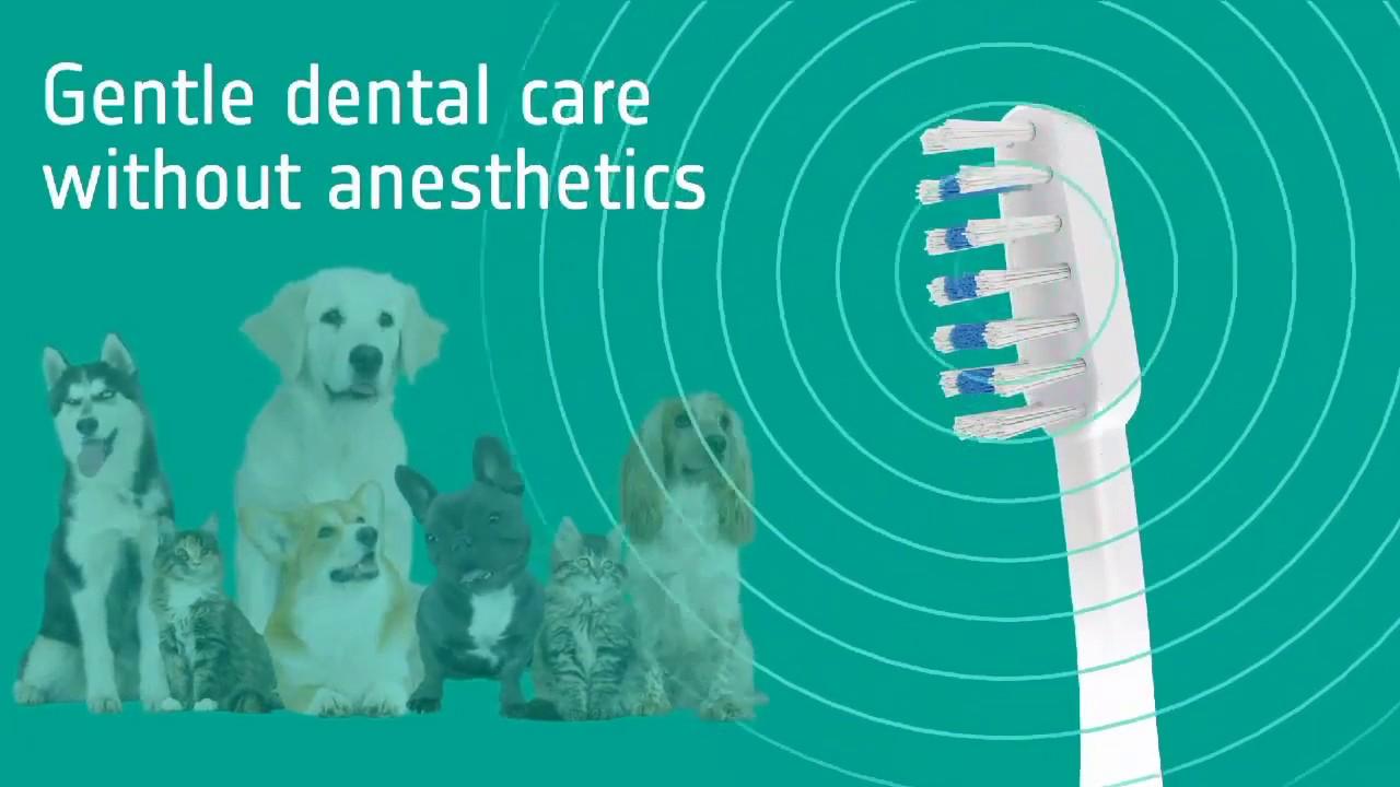 Home   Pure Ultrasonic   Emmi Pet & Emmi Dental