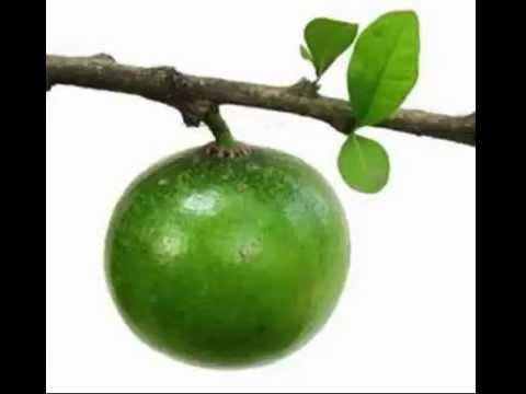 Dalanghita Fruit Health Benefits & Side Effects