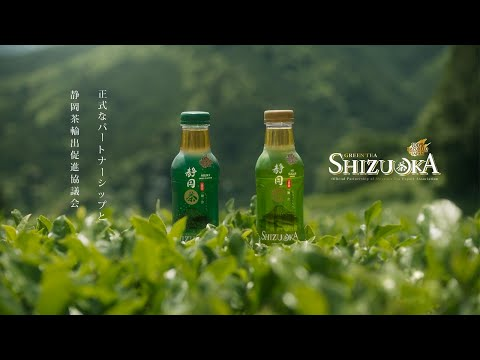 Shizuoka Green Tea : The Origin