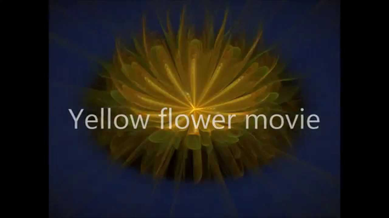 Yellow flower movie youtube mightylinksfo
