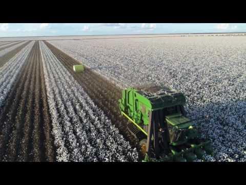 Cotton Harvest 2017 NSW