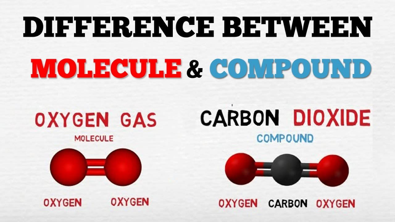 Difference Between A Molecule  U0026 A Compound