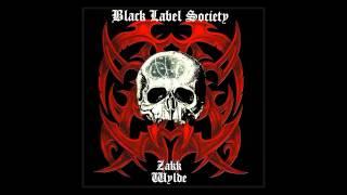 Black Label Society - Counterfeit God