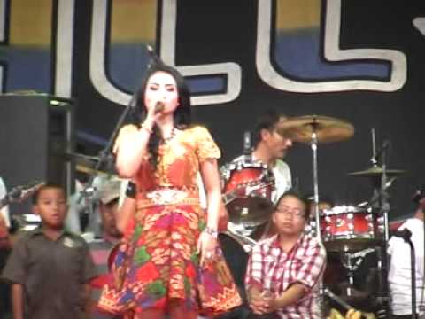 pesona- Ani Arlita- New Pallapa