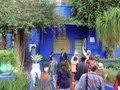 モロッコの旅 マジョレル庭園 の動画、YouTube動画。