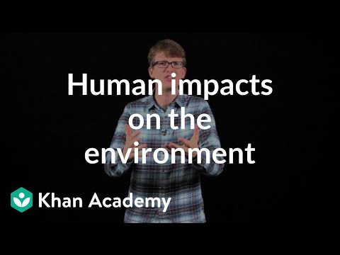 5 human impacts on the environment