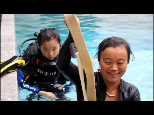 PADI WOMEN'S DIVE DAY 2018 OFFICIAL VIDEO - SCANDI DIVERS, PUERTO GALERA