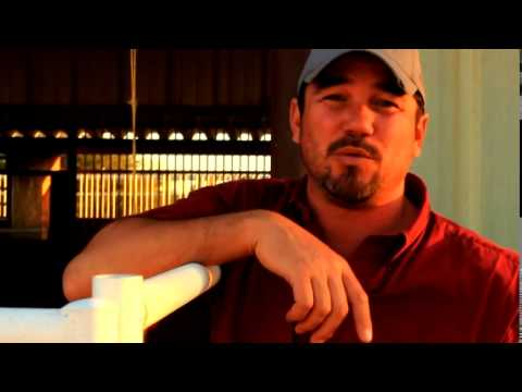 Behind the scenes interview with Dean Cain in A Horse for Summer the movie