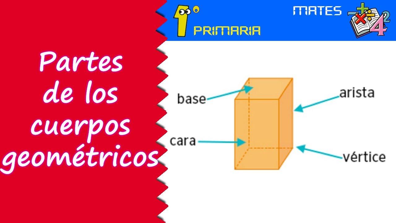 Matemáticas 1º Primaria Tema 8 Partes De Los Cuerpos Geométricos
