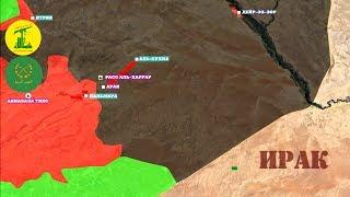 10-11 июня 2017. Военная обстановка в Сирии. Сирийская армия вышла к границе с Ираком.
