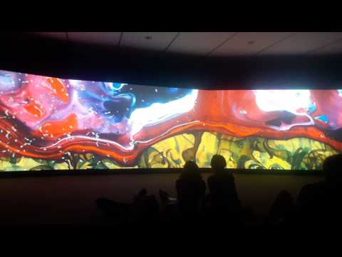 Honolulu Museum of Art: Audio Visual Immersive Art Project