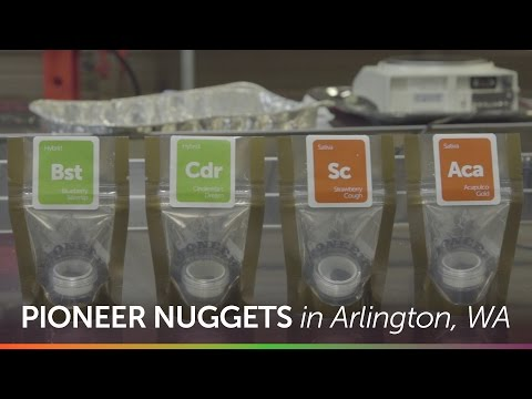 Pioneer Nuggets in Arlington, Washington