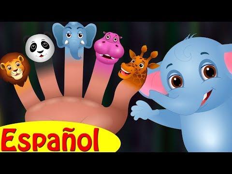 Familia Dedo Elefante y muchas más Canciones de Familia Dedo de Animales | ChuChu TV