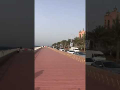 Dubai Atlantis tour, palm