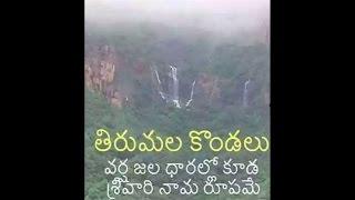 Miracle in Tirumala Tirupati - Govinda Namalu @ TTD Waterfalls