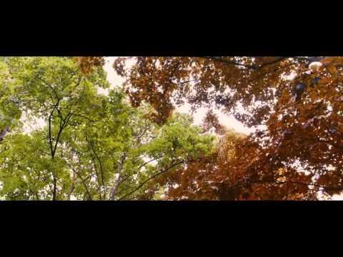 Видео Синий самый теплый цвет скачать книга epub