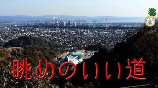 和歌山市立八幡台小学校の近くはウォーキングにお勧め・夜景もきれい【 うろうろ和歌山 】木ノ本岬線