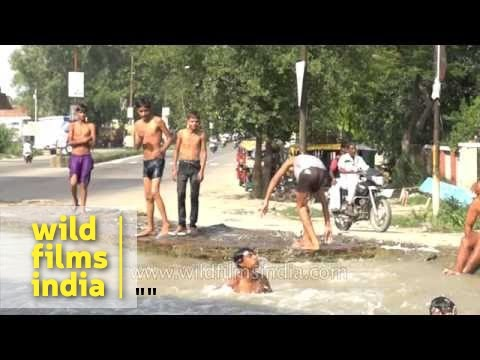 Boys jump into canal to beat Indian summer heat: slow motion
