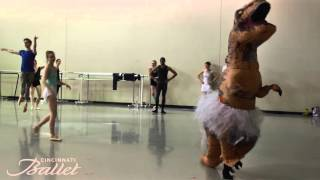 Visit http://bit.ly/23JaBQE Cincinnati Ballet invited T Rex to beco...