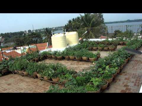 Vegetable Roof Garden - Sulur Panchayat Union Office Building